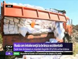 Rusia are intoleranță la brânza occidentală. Autorităţile sanitare au distrus şapte tone de brânzeturi importate ilegal din UE și SUA, așa cum au distrus tone de mere moldovenești tot anul acesta