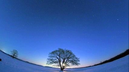 DAISHI DANCE - winter night melodies