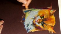 Speed Painting - Drawing a Cat with Colored Pencils - Time Lapse