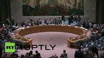 USA: UN Security Council talks North Korea human rights
