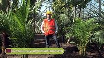 Création de la serre tropicale du zoo de Vincennes par Vertdéco