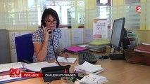 Canicule : l'est de la France souffre des fortes chaleurs