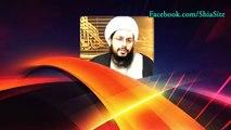 التمييز بين المراجع العدول ومنتحلين المرجعية - المجدد الثالث آية الله الشيخ ياسر الحبيب
