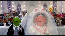 Kermit the frog has a love Child.  Miss Piggy Breakup and reaction. BREAKING NEWS  The Muppets