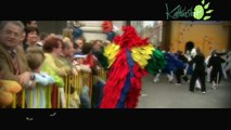 Ieper - Ypres  Kattenstoet - Cortège des Chats - Cat Parade