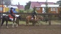 1. Platz im Western Horsemanship LK4A für Sylvia mit Smoky