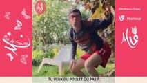 Meilleurs Vines Francophone avec les titres - vines & Instagram - Meilleurs Vines d'humour /P : 4