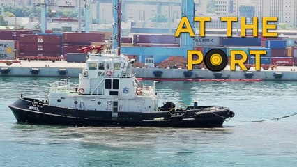 Ships and Boats in Action at the Port | Videos For Children |  Toys for Boys