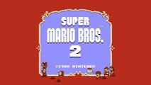 Vadrum Meets Super Mario Bros  2   Super Mario Bros  2 Music HD