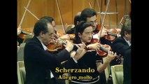 Kavakos - Lalo - Symphonie espagnole - Movt. II