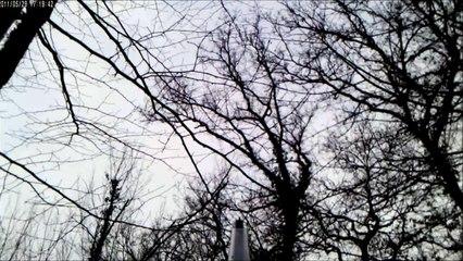 Tir et Culbute d'un Renard en Battue de Sangliers - Caméra Embarquée - Chasse HD