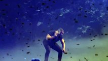 """Drake: Jungle Tour: """"Know Yourself"""" @ The ACC Toronto June 2, 2015"""