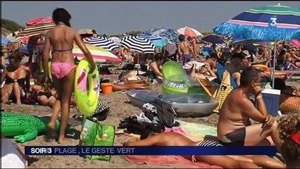 Vert De La Se Au Met Plage L'espiguette GLqSjzMVUp