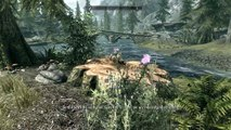 Skyrim Special Edition Xbox One Mods|17|Cheat Room