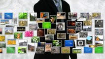NPC MEDIA Création - Agence de communication digitale (agence web, social media, motion design)