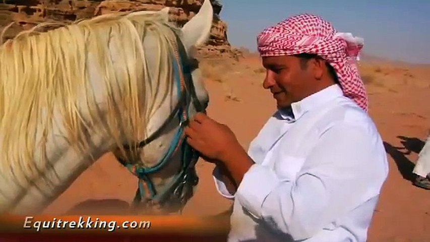 Wadi Rum Horseback Riding on Equitrekking