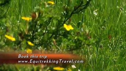 Equitrekking Travel Canadian Rockies Vacation