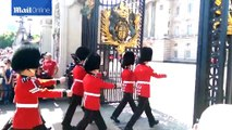 Queen's Guard falls over during the Changing of the Guard