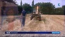 20150807-F3Pic-19-20-Oise-Jeunes Agriculteurs et le manque de terres agricoles