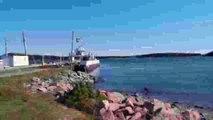 Seascape Kayak Tours | Kayaking Adventure | Deer Island, New Brunswick,  Canada