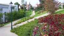 SCANDELLA FRERES  : Création,entretien,élagage d'espaces verts Clichy (93)