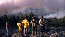 Des centaines de pompiers mobilisés pour lutter conte les incendies au Portugal