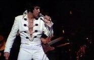 Elvis Presley - Polk Salad Annie Live (High Quality)