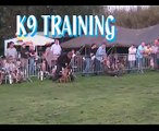 "K9 Attack Training ""Police Dog training VS Criminals"""
