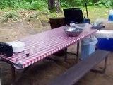 2015 Buffalo lake  camping & fishing 005