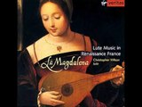 French Renaissance Lute