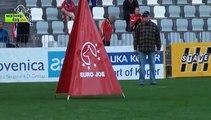 Belgier WM 2013 IPO / malinois dog