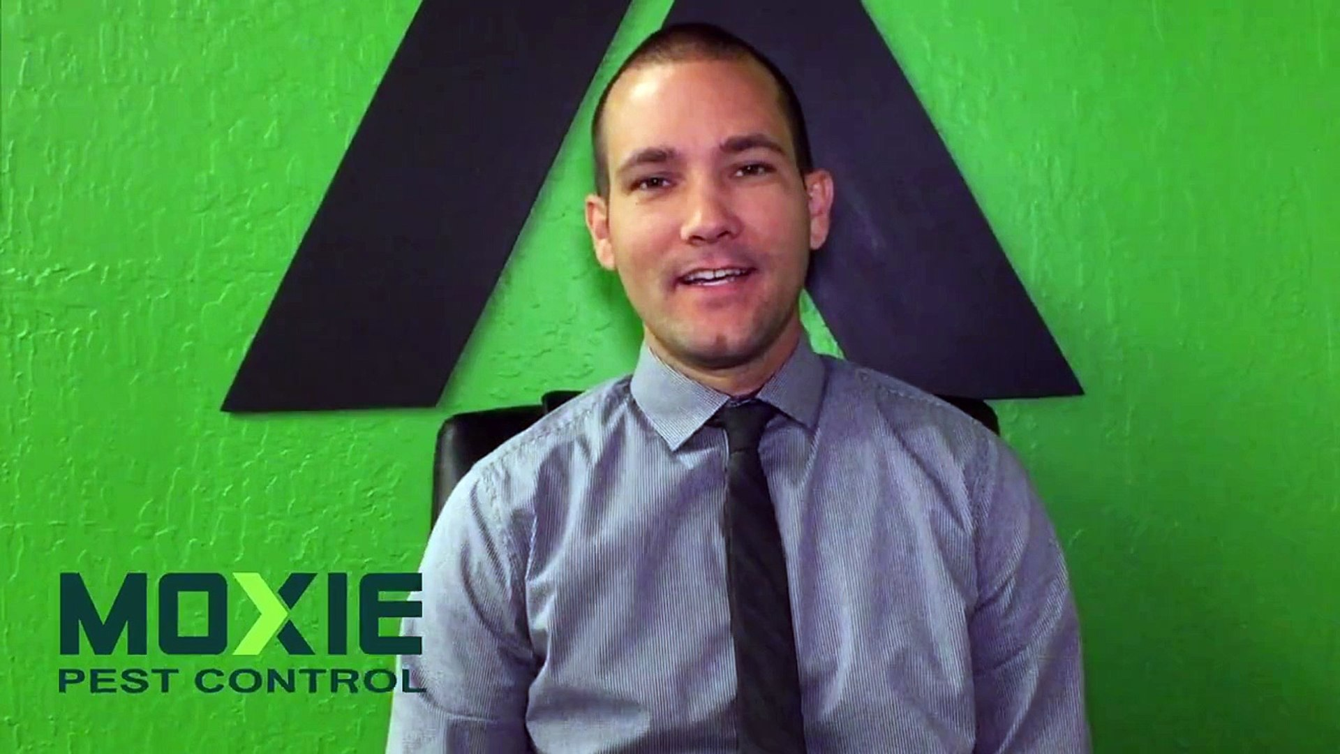 Moxie Pest Control Phoenix Exterminator Video Dailymotion