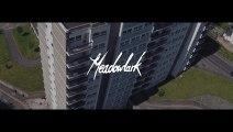 Meadowlark - Fly