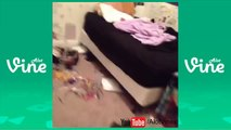 A Potato Flew Around My Room Before You Came Vine Compilation