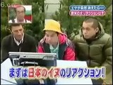 Japanese Game Show__Funny Japanese Show - Dog Prank.mp4