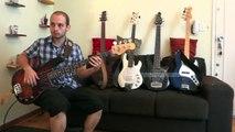 Bass comparison - Fender precision, jazz bass, Musicman bongo, stingray