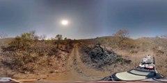 360 VR Video, Elephants at Bongani Mountain Lodge - Photos of Africa
