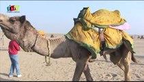 Camel Safari - Jaisalmer, Rajasthan - India by Rooms and Menus