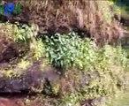 Pratapgad Fort, Mahabaleshwar, Maharashtra - Indian Historical Fort at Hill Station Video