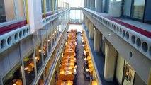 University of Waterloo جامعة واترلو