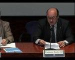 Joan Antoni Pastor / Francesc Xavier Gil - Glocalització de serveis TIC