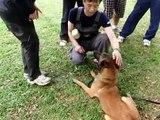 Euro Dog Training Specialist Training with my Instructor Mia IPO World Champion