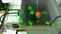 Under Current Recirculating Deep Water Culture (RDWC) - video