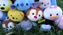 TSUM TSUM Disney Parody with Mickey Mouse, Donald Duck, Goofy and other Disney Tsum Tsum