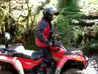 can am outlander 800  in the woods