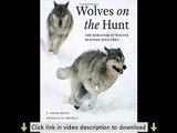 Wolves on the Hunt: The Behavior of Wolves Hunting Wild Prey PDF