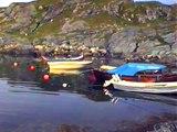 Semester i Haugesund,Norge Juli 1996,sillungar krabba infångad circa 1 meter under vattnet