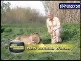 Animals have fun @ Funny Animal Videos   Funny Pet Videos, Funny Cat Videos, Cute Pets