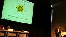 Colaboração e Cooperação na Educação Online -  Morten Paulsen - NKI - Noruega (1/2)