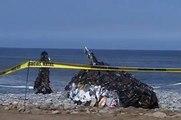 Ensucias, matas. Mantén limpias tus playas.